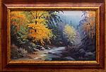 Obrazy - Divoká krása Jeseníků